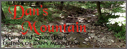 Dan's Mountain Club Logo
